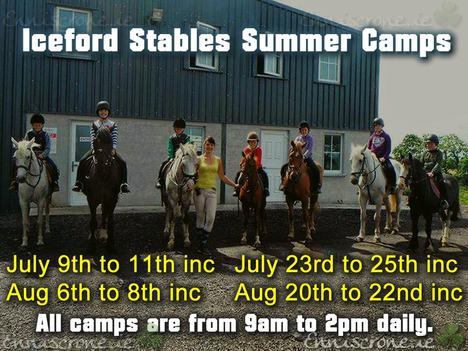 Iceford Stables Horse Riding Summer Camps