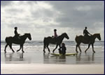 Enniscrone Horse Riding